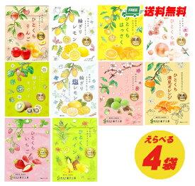 (お試しプライス)南信州菓子工房 しっとりやわらか ドライフルーツ 選べる4袋(ゆうパケット送料無料)