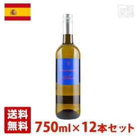 キンタ・アポロニア 750ml 12本セット 白ワイン スペイン 送料無料