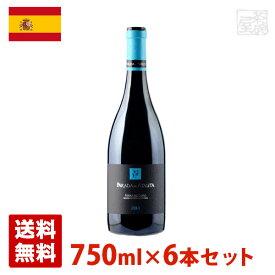 パラダ・デ・アタウタ 750ml 6本セット 赤ワイン スペイン 送料無料