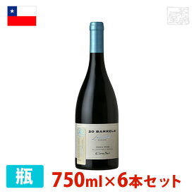 コノスル ピノ・ノワール 20バレル リミテッド・エディション 750ml 6本セット 赤ワイン 辛口 チリ