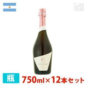 ミッシェル・トリノ スパークリング ロゼ 750ml 12本セット ロゼワイン 泡 辛口 アルゼンチン