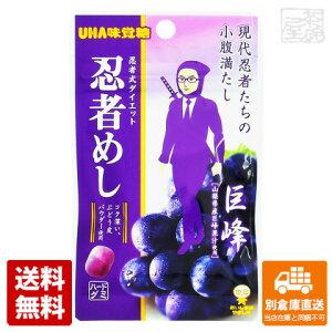 UHA味覚糖 忍者めし 巨峰 20g x10 セット 【送料無料 同梱不可 別倉庫直送】