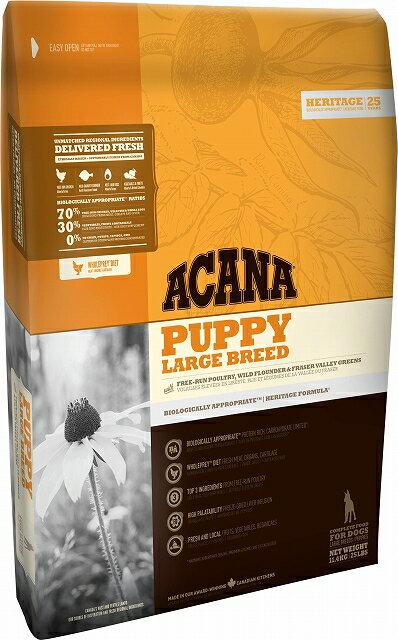 アカナ パピーラージブリード 11.4kg (大型犬子犬用)おやつのプレゼント付き