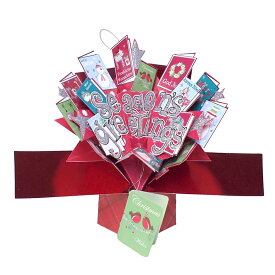 セカンドネイチャー SECOND NATURE プチポップアップカード カード クリスマス レッド 赤 緑 白 ホワイト クリスマスカード おしゃれ かわいい Xmas 海外 3D メッセージカード 季節のカード 絵葉書 グリーティングカード 小学生 買い回り 買い周り 買いまわり ポイント消化
