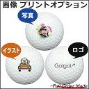【ボールは別売りです。名入れ対応ゴルフボールと一緒にご注文ください】【写真・画像・ロゴ印刷変更オプション】名入…