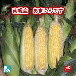 北海道産 とうもろこし 南幌町 あまいんです L 10本入 スーパースイートコーン(フルカラー)の高糖度商品です!!【送料無料】