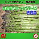北海道名寄産ピアシリ グリーンアスパラガス(露地アスパラ) 2L 1kg(500gx2)【送料無料】【二重選別の秀逸品】…