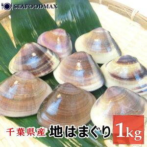 地はまぐり 1kg 特大 約100gサイズ 殻付きハマグリ 冷凍 国産・地蛤1kg・