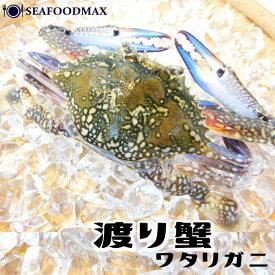 渡り蟹 ラウンド 1杯 約100g 【ワタリガニ 姿 かに カニ】・渡り蟹姿・