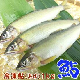 鮎 (冷凍鮎)1kg (13〜16尾)【冷凍】【あゆ 鮎 アユ バーベキュー BBQ】【ギフト】・冷凍鮎・