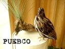 ★PUEBCO(プエブコ) Eagleイーグル L350 リアルな鳥のオブジェ 鷲ワシ 置物/剥製ではありません!雑貨通販【RCP】