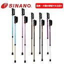 SINANO シナノ レビータ あんしん2本杖 2本組 ノルディック ウォーク ポールウォーキング 安心2本杖 あんしん二本杖 …