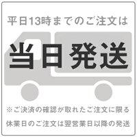 大奥<男女逆転>【Blu-ray】