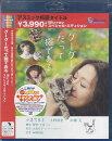 グーグーだって猫であるBlu-rayスペシャルエディション【Blu-ray】