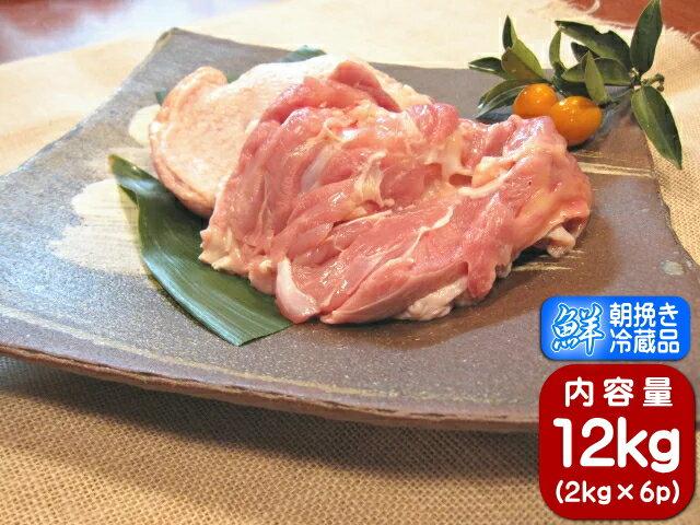 香川県産 鶏肉 もも肉 健味鳥 国産 業務用 若鶏もも肉 12kg 1ケース