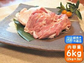 香川県産 健味鳥 もも肉 国産 鶏肉 業務用 若鶏もも肉 業務用サイズ 6kg(2kg×3個)
