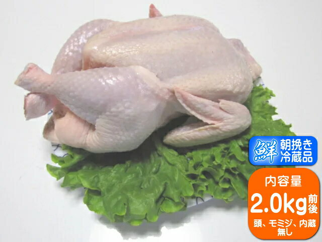 【香川県産健味鳥】 若鶏丸一羽・丸鳥(小)  約2.0kg前後