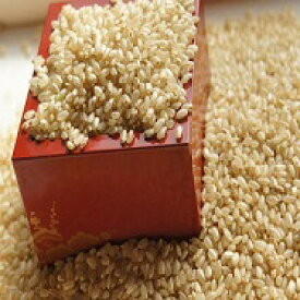発芽玄米全粒10キロ 栄養の表皮丸ごと 無精白の全粒はここだけ 無農薬 低GI値54の糖質制限食 生きてる全粒・手選別の精選品ビタミン・ミネラル発芽で倍増・白米と無洗で炊ける 産地直送 送料無料