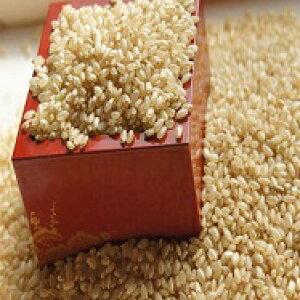 ここだけ全粒の発芽玄米4キロ 無農薬 低血糖値の糖質制限食 グルテンフリー!手選別の精選品 発芽で栄養素倍増・食物繊維は4倍 白米と一緒に炊ける無洗米
