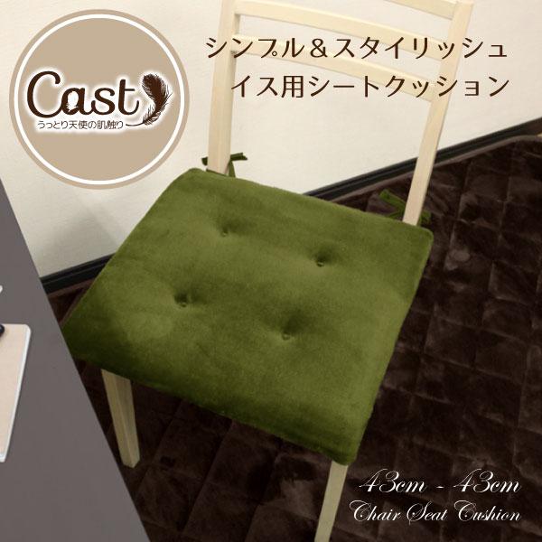 クッション シートクッション 43×43cm Cast グリーン 緑 洗える スクエアクッション 座布団 椅子用 イス用 車 ひも付き 無地 おしゃれ かわいい 可愛い 四角 フロア ソファーにも 腰痛対策にも キャスト 新生活 オフィスにも bn