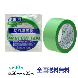 【全国】リンレイテープ製 養生用・PE、PET粘着テープ #621 50mm×25m 1箱(30巻入)
