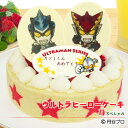 【あす楽】【誕生日ケーキ】ウルトラヒーローケーキ苺(いちご)スペシャル〜濃厚生クリームと二種類のイチゴの贅沢ケ…