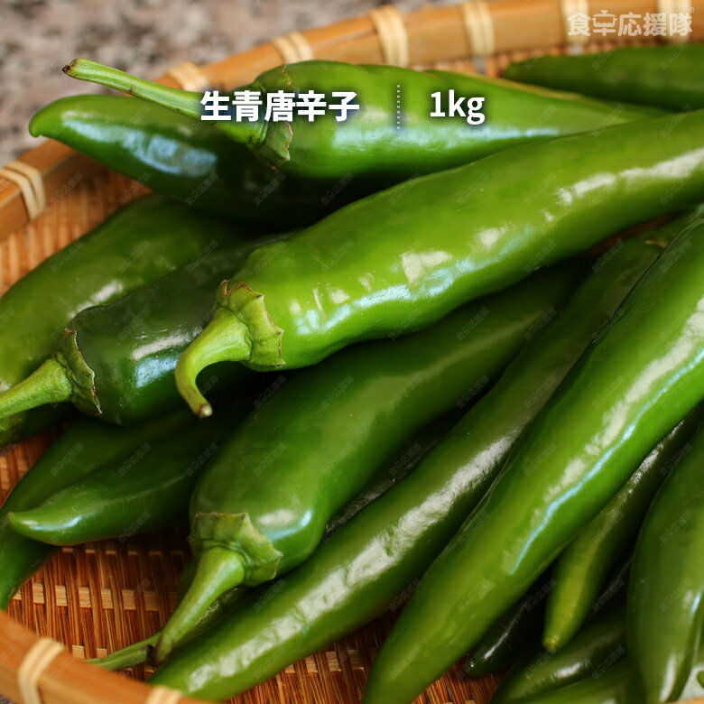 青唐辛子 生1kg 韓国産「送料無料、一部地域除く」