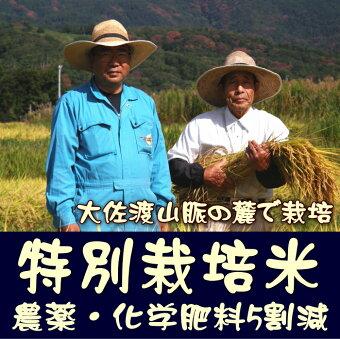 特別栽培米・農薬化学肥料5割減