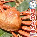 【予約】佐渡産紅ズワイガニ 紅Aセット合計2kg以上 400〜500g×5匹入り鮮度がいいから美味しい!! 獲って、茹でて、…