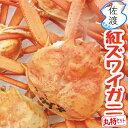 【予約】【訳あり】佐渡産紅ズワイガニ 丸特セット大3-5匹入or 小6-8匹 鮮度がいいから美味しい獲って、茹でて、す…