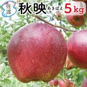 秋映5kg
