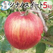 佐渡産りんごシナノスイート大玉5kg13〜14玉