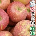 【訳あり】佐渡産りんご『サンふじ』10kg 中玉(約30〜36玉前後)完熟収獲だから、とっても甘くて美味しい!!りんご農家を厳選完熟り…