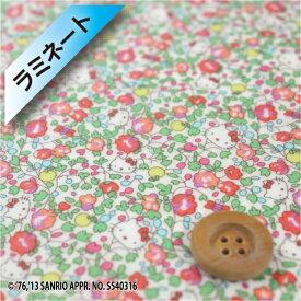 【サンドウ限定復刻色】ハローキティ × リバティプリント【ラミネート加工】(Hello Kitty Orchard ピンク&グリーン)ハローキティ・オーチャード【DC28137・13A】