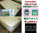 フランスベッド スプリングマットレス・セミダブルサイズ マットレス