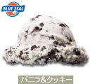 メガ盛り 業務用 バニラ&クッキーアイス ブルーシールアイス 大容量 4リットル 4L アイス アイスクリーム 業務用アイ…