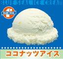 【業務用】ブルーシールアイス アイスクリーム 沖縄限定 4リットル ビッグ 内祝い あす楽 ココナッツ