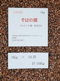 そばの種 10Kg 北海道産 転用品 キタワセ種 【送料無料】