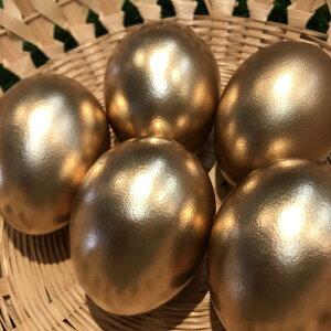 くんせいたまご(金)10個入り『ゴールデンエッグ』金の卵 燻製たまご くんたま ギフト 贈り物 金銀銅の卵 保存食