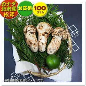 【カナダ・北米産松茸】お買得松茸:約100g