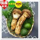 【国産松茸】約100g:岡山・兵庫県産