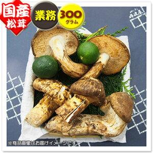 【国産松茸】:業務用松茸:約300g:岡山/兵庫産(※変形・傷・折れ・小粒・ひらき)