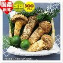 Kokusan300 shin 1