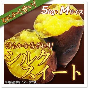 【さつまいも】シルクスイート:約5kg(Mサイズ)茨城県産 サツマイモ  滑らかな舌ざわりのしっとりした甘いさつまいも♪さつまいも特有の繊維が少ないので食べやすい!