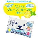 【メール便OK】ひんやりふくだけシャワー ミント&グレープフルーツの香り(10枚入)