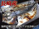 真あじ開きの干物 長崎県産 / あじ / 鯵 / ひもの 05P09Jul16