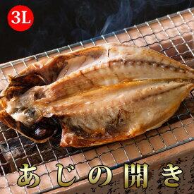 あじの開き干物(3L) 10枚セット【送料無料】(オランダ産) / アジ / 鯵 / ひもの