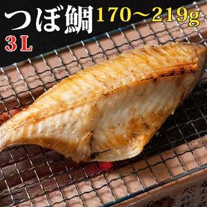 つぼ鯛フィレ 人気の高級干物 (特大)170〜219g / ひもの / 壷鯛
