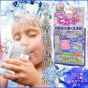 【全国送料無料(メール便発送)※代引き選択の場合は有料です。】自動製氷機洗浄剤・冷蔵庫・冷凍庫・かき氷・洗う・キ…