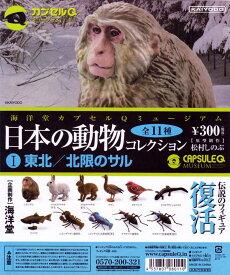 日本の動物コレクションI 東北/北限のサル 海洋堂(シークレット付全12種セット+DP台紙おまけ付き)【即納】